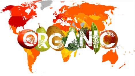 کشاورزی ارگانیک و اصول آن در جهان امروزی